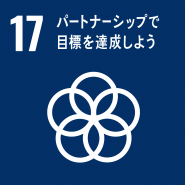 目標17:持続可能な開発に向けて実施手段を強化し、グローバル・パートナーシップを活性化する(SDGs)