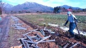 これは一部ですが、畑にはた~くさんの パイプが埋まっていました(^^) 掘り起こすかっちゃんは汗だくになっていました(^^; かっちゃん、お疲れ様♡