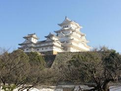 別名、『白鷺城』 平成の大改修から1年程経とうとしておりますが、やはり白くて美しかったです!お城好きのかっちゃんはとにかく嬉しくて、歩く足取りがまぁ~軽い軽い(^^)