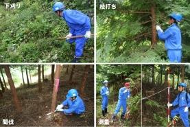 山林作業体験