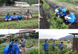 植林用苗の生産者宅を訪問し、苗木についての勉強