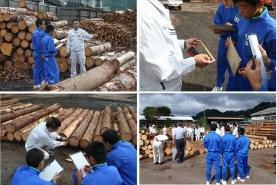 岡山県森林組合連合会勝山共販所にて木材市場のせり売りを見学