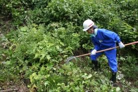 下刈り 作業体験(菅谷地内)