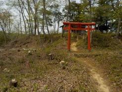 二の壇の鳥居から稲荷神社を望む 新緑が始まって、美しです