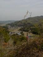 虎口付近から中津井の街方向を望む、紅葉の苗木を植樹