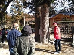 佐波良・形部神社境内の縁結びの木についてもしっかりPR!!