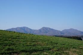 草原と蒜山三座。 青と緑のコントラスト、おいしい空気は最高です!