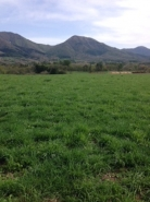 新緑と草原の蒜山高原。  朝のサイクリングは、とても気持ちがいいです。  汗をかいた後のラムネは最高!  また、大量に仕入れに行かねば!