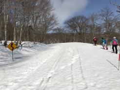 例年に比べ半分の積雪。それでも、雪に埋まった道路標識で、積雪量がわかるでしょうか。